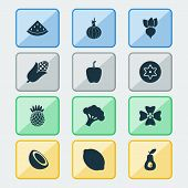 Vegetable Icons Set With Dad, Pineapple, Palm Fruit And Other Ananas Elements. Isolated  Illustratio poster