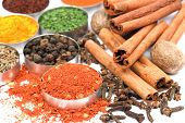 stock photo of indian food  - Ground red pepper and other spices used in indian cooking - JPG