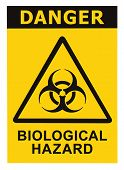 stock photo of bio-hazard  - Biohazard symbol sign of biological threat alert black yellow triangle signage text isolated - JPG