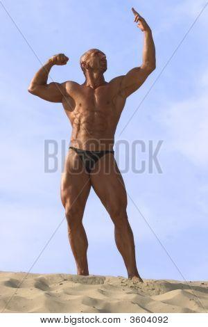 Bodybuilding 48