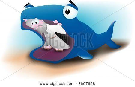 Jonah & Whale