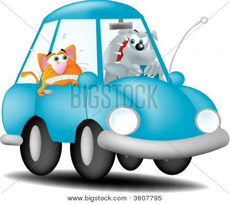 Dog Driving Cat