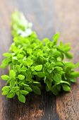 stock photo of cutting board  - Bunch of fresh herb oregano close up on wooden cutting board - JPG