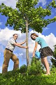 stock photo of planting trees  - Father and daughter watering a young tree - JPG