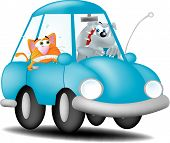 Dog Driving Cat
