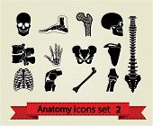 stock photo of sternum  - Human anatomy icons parts - JPG