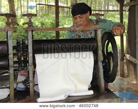Phuket, Thailand - Aug 10Th: An Unknown Woman Rolls Latex Harvested From Rubber Trees On August 10Th