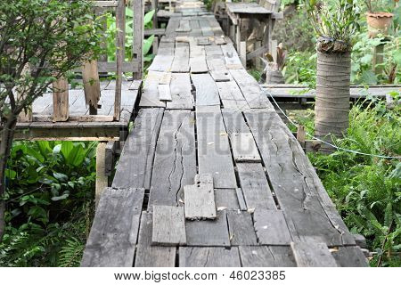 The Old Wood Gangway Between Two Garden