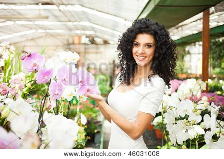 Woman looking to orchids in a greenhouse