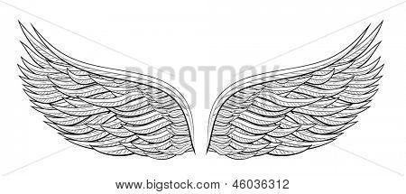 cartoon wings