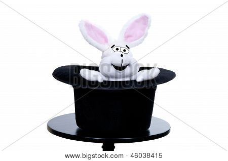Stuffed Rabbit In A Top Hat