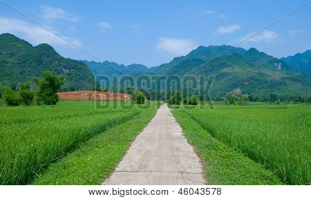 Summer Landscape With Green Field, Road And Mountains