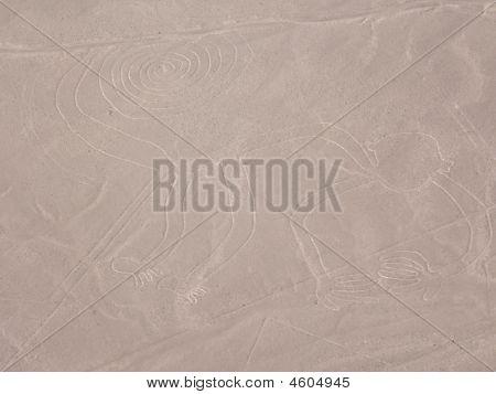 Nazca Lines, The Monkey