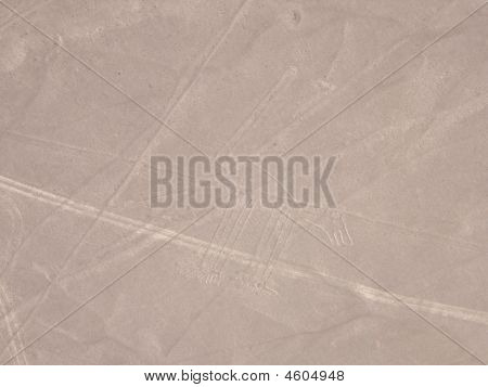 Nazca Lines, The Dog