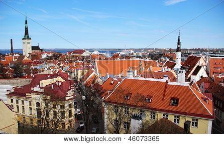 Tallinn Streets