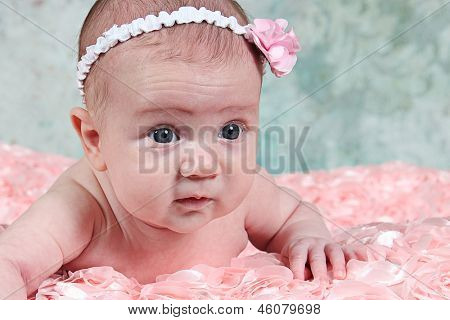 Cute little baby girl - newborn