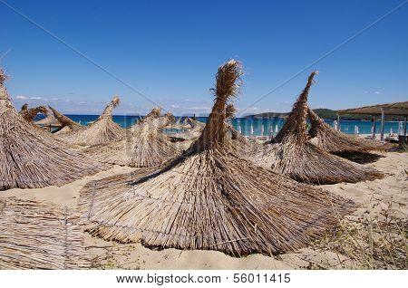 Thatched beach umbrellas