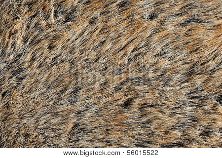 Brown synthetic fur