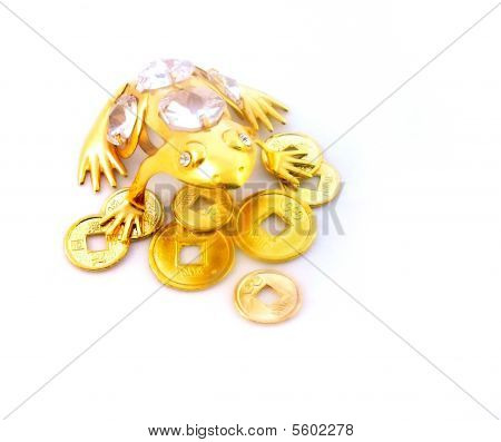 Gold Frog Protecting Coins