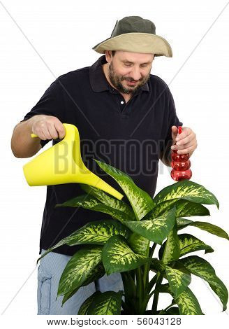 Gardener Watering Big Green Flower