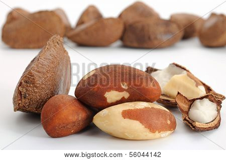 Close-up image of Brazil nut studio isolated on white background