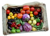 pic of vegetable food fruit  - Just harvested fresh and ripe biological vegetables and fruits in a wooden box isolated over white - JPG