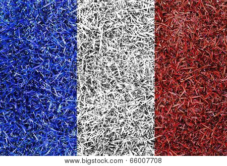 France Flag Color Grass Texture Background