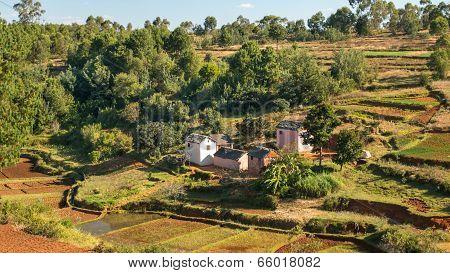 Rice Farmer's House