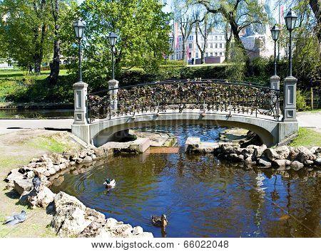 Riga.   Padlocks On The Bridge Of All Lovers.