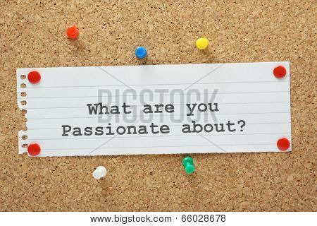 What Are You Passionate About?
