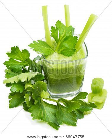 Freshly Squeezed Celery Juice