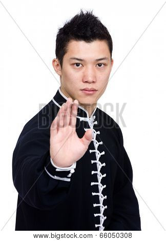 Chinese kung fu fighter