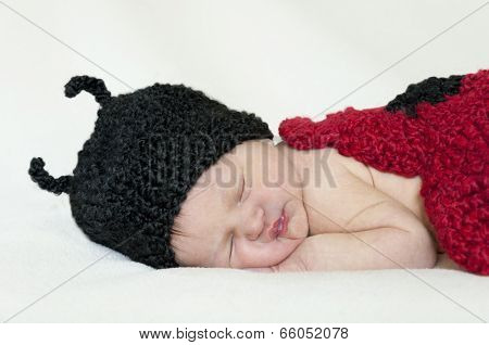 Closeup of baby with ladybug knit hat and bodice
