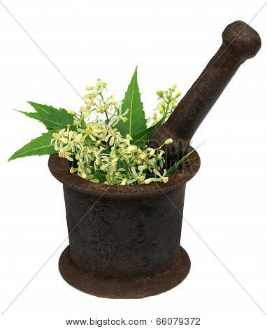 Neem Leaves And Flower On A Vintage Mortar