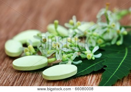 Pills Made From Medicinal Neem