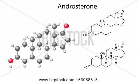 Structural Chemical Formulas And Model Of Androsterone Molecule