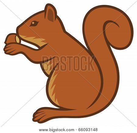 squirrel with hazelnut