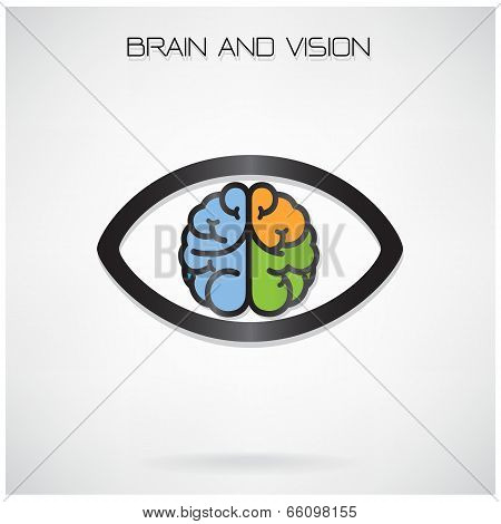 Brain And Vision Concept