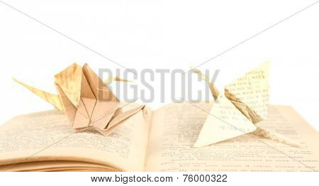 Origami cranes on old book, on white background
