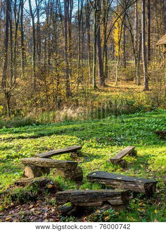 Group of wooden benches on the forest clearing