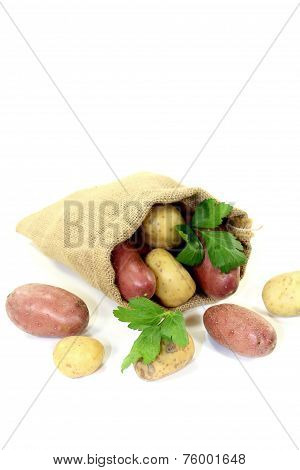 Colorful Potatoes In A Sack