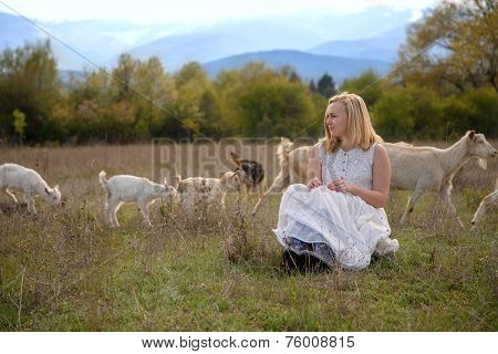 Little shepherdess