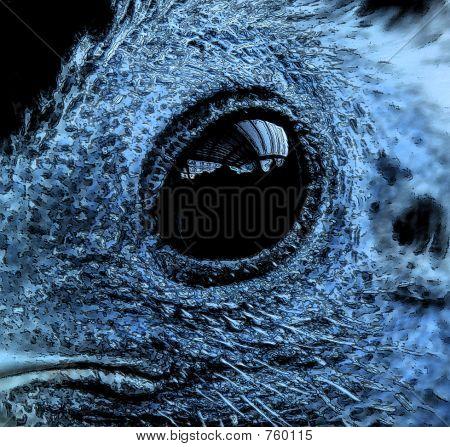Birds eye2