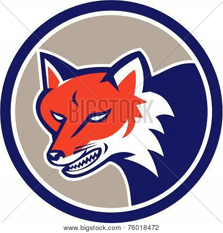 Red Fox Head Angry Circle Retro