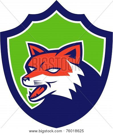 Red Fox Head Growling Shield Retro
