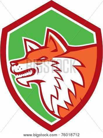 Red Fox Head Pouncing Shield Retro