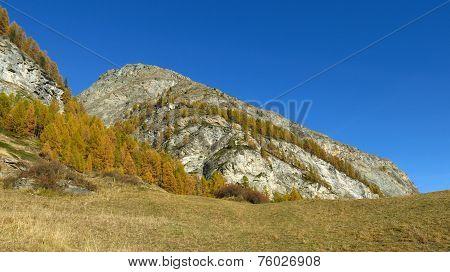 Autumn In Wallis Canton
