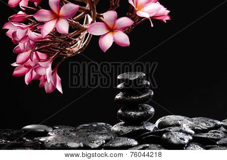 Still life with branch of frangipani with stacked stones