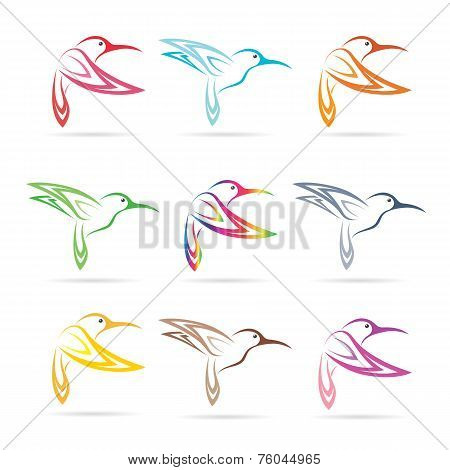 Vector Group Of Hummingbirds On White Background
