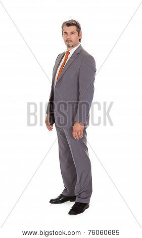 Confident Mature Businessman